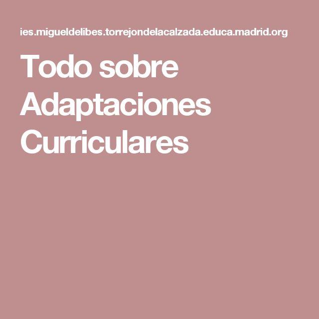 Todo sobre Adaptaciones Curriculares
