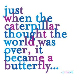 """Just when the caterpillar thought the world was over, it became a butterfly..."" -Proverb 5"" square. blank inside. square envelopes, extra postage required. printed in the use on recycled paper."