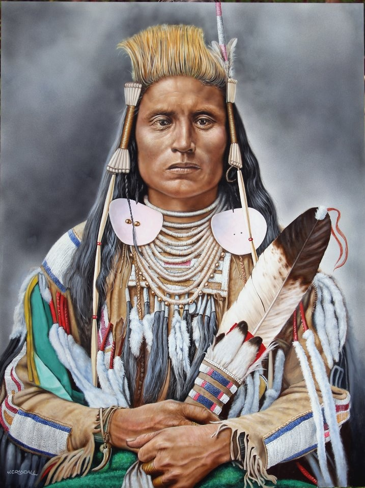 My Great Great Grandfather :) Beautiful Indian painting by Jerry Crandall...This one is Medicine Crow