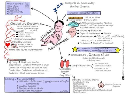 newborn assessment help!