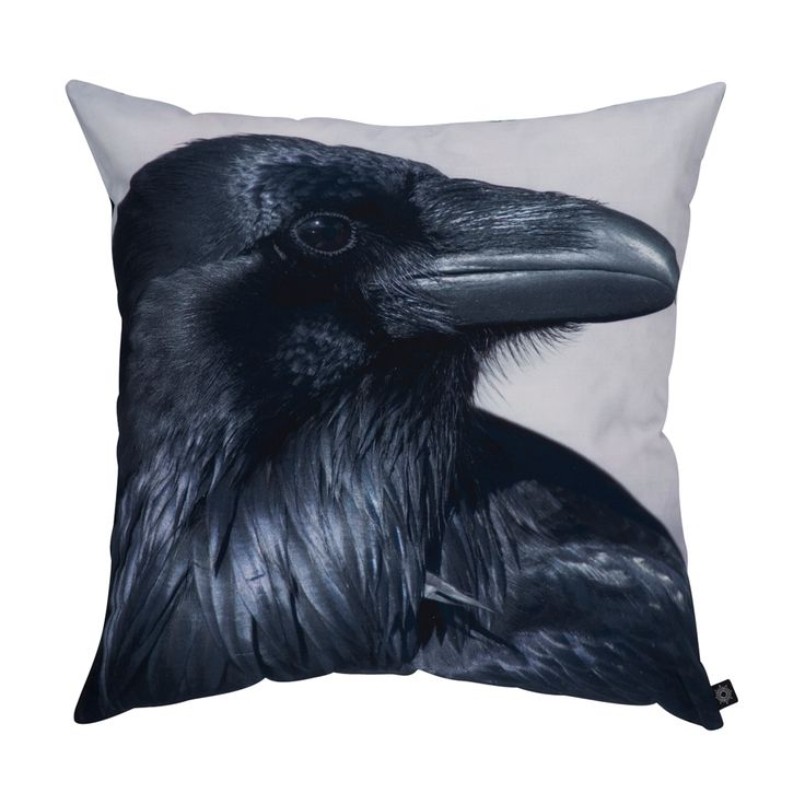 Black raven pillow adds some drama and glamour to a couch, chair or bed. At shopkontrast.com.