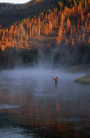 Fly Fishing the Madison River. Wyoming