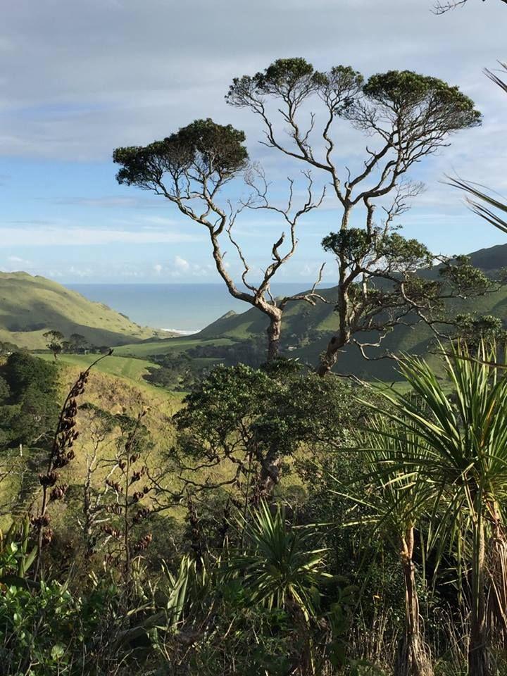Awhitu Peninsula, Manukau