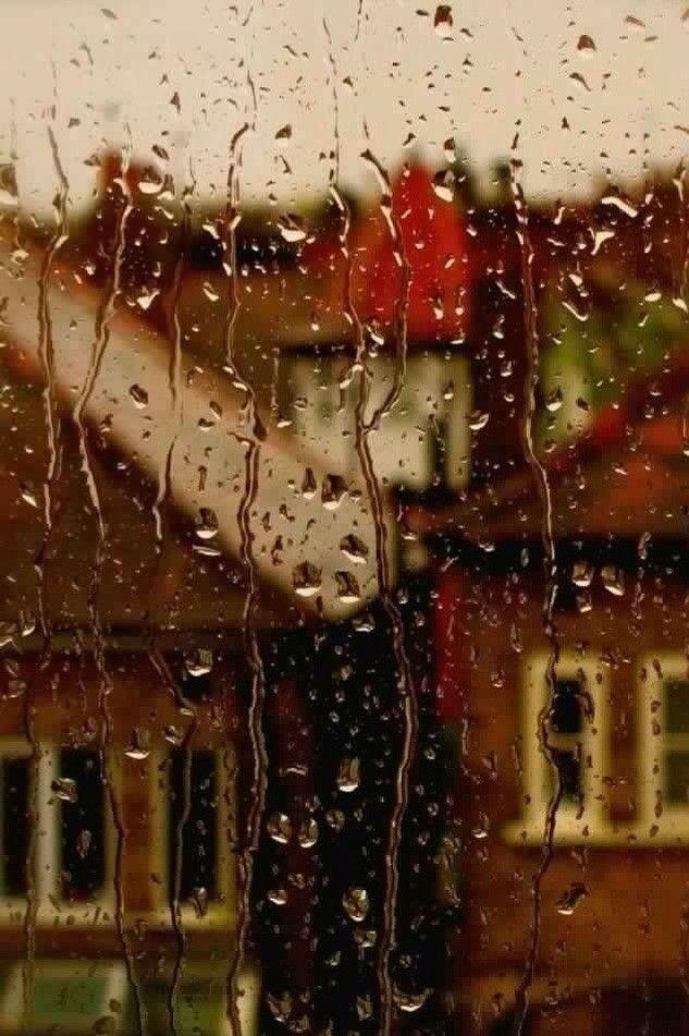Дождь. Осень
