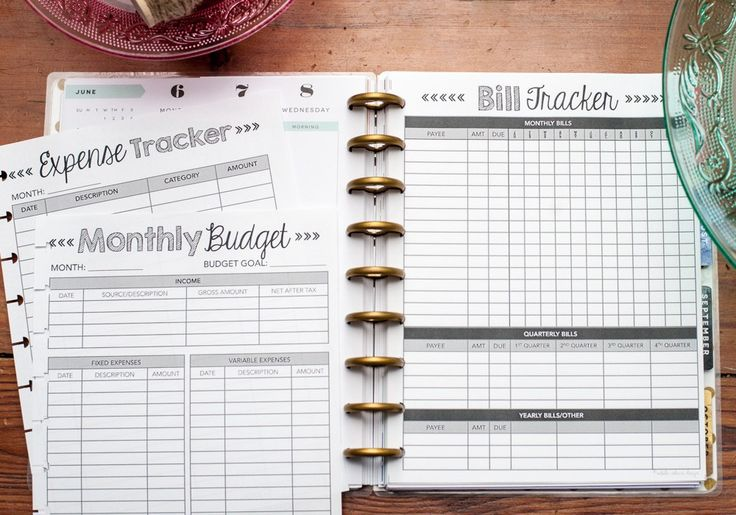 Monthly Budget Inserts for the Happy Planner, Finance Forms, Expense Tracker, Dave Ramsey Debt Snowball, Natalie Rebecca Design, Me and My Big Ideas, Create 365 Planner