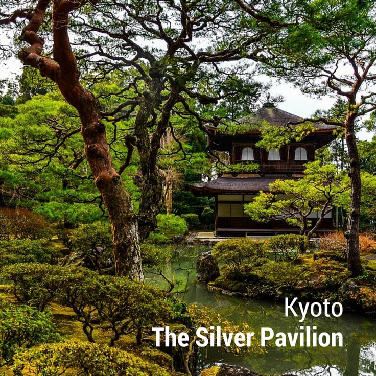 #Kyoto, #Japan The Silver Pavilion (Ginkakuji) is where Japanese traditional #culture start. #Travel there and see!