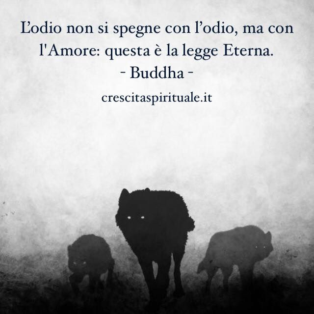 Odio e Amore - Buddha | Citazioni e Aforismi | Crescita Spirituale