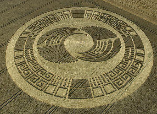 Загадочные круги на полях – 60 интересных фотографий