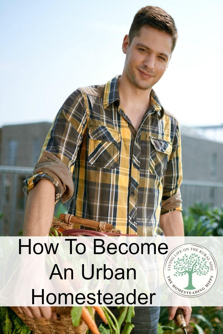 wondering how to become an urban homesteader the o 39 jays