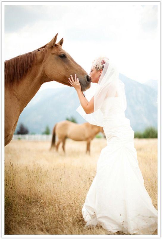 cute :) If I had a horse...