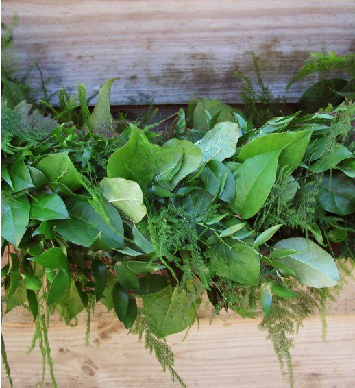 Soft Ruscus, Asparagus Plumosus and Salal Garland