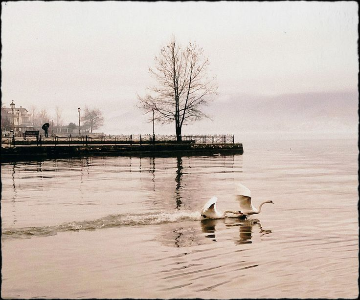 https://flic.kr/p/JTD8ba   Winter   Ioannina, lake Pamvotida (Greece) - February 2016