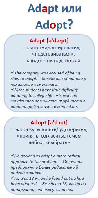 Английские слова, которые мы путаем: Adopt vs. Adapt #learnathome #englishgrammar #английскийдома #verbs #глагол #adopt #adapt