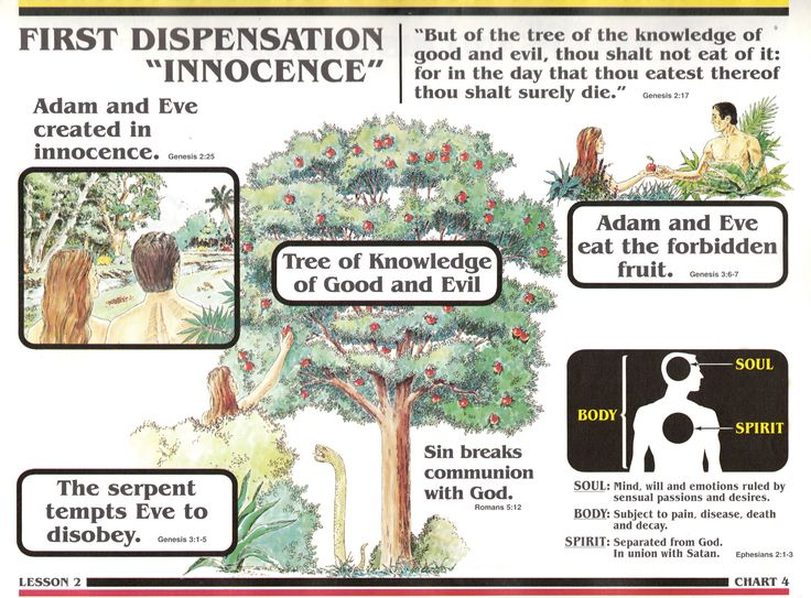 The seven dispensations – What are they?
