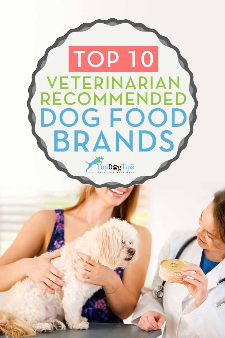 10 Vet Recommended Dog Food Brands That Are Inexpensive. As a veterinarian, dog lovers are always asking me for my opinion on what are top vet recommended dog food brands that are healthy for dogs. But one thing owners want to consider is the price range which they can afford, so I have to consider the best cheap dog foods that are also good enough. Hopefully this list of veterinarian recommended dog foods will help you make a better choice for your Fido. #dogs #dogfood #vets