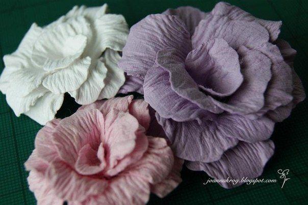 Красивые цветы из акварельной бумаги. Обсуждение на LiveInternet - Российский Сервис Онлайн-Дневников