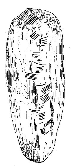 Ogham stone from the Isle of Man showing the droim in centre. Text reads BIVAIDONAS MAQI MUCOI CUNAVA or in English, Of Bivaidonas,