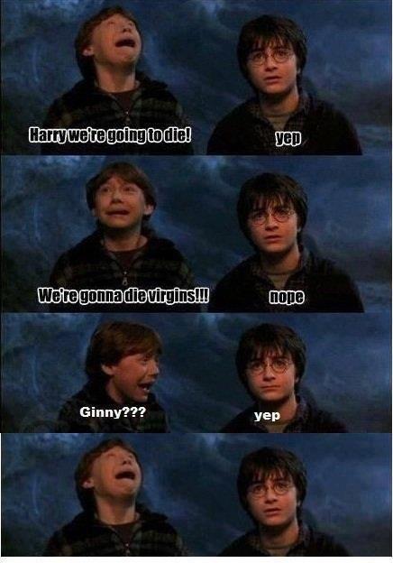 "Ron:""We're gonna die virgins!"" Harry:""Nope."" Ron:""Ginny???"" Harry:""Yep."" Ron: D:"