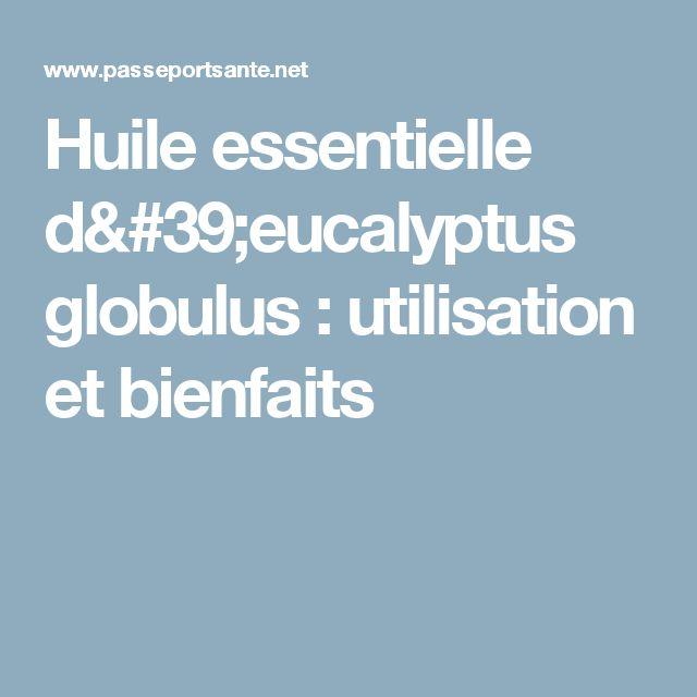 Huile essentielle d'eucalyptus globulus : utilisation et bienfaits