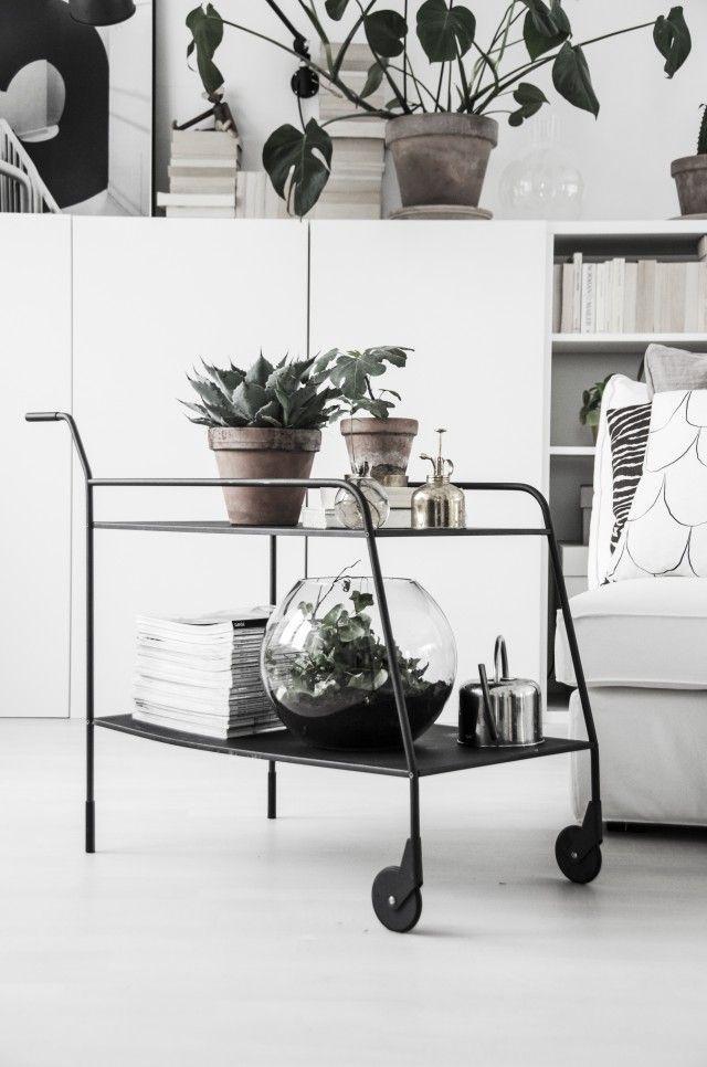Interior design details: plant/magazine table, fish bowl, white interior, modern minimal