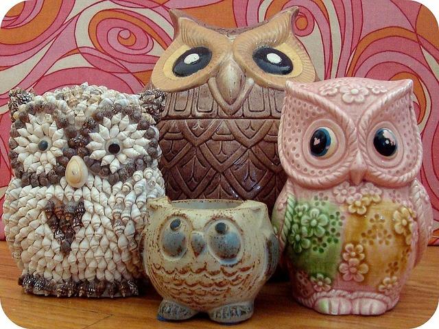94 melhores imagens de owls no pinterest corujas coruja colorida cute owls3 the one made out of shells fandeluxe Choice Image