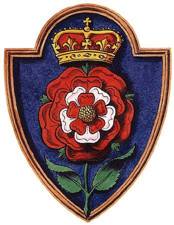 фото символа англии алой розы частой