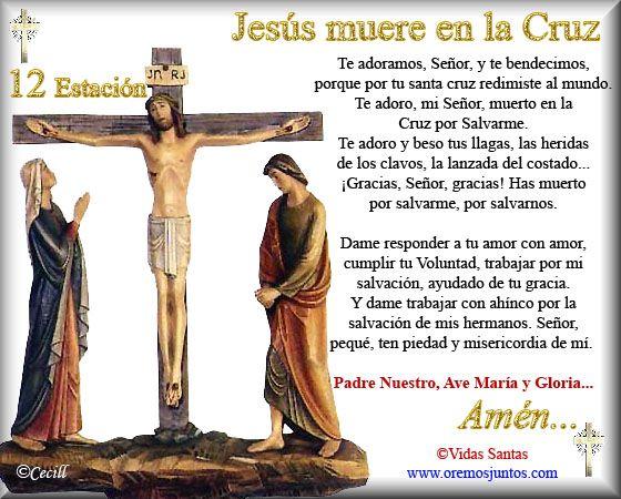 """Estaciones del Via Crucis †   † Via Crucis †    A las etapas del """"Viacrucis"""" se le  denominan estaciones y tradicionalmente se cuentan 14, a..."""