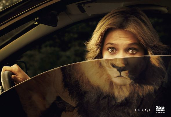 Safari Zoo #FunnyAdvertising