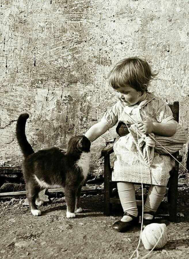 Little knitter. Shetland. 1940's