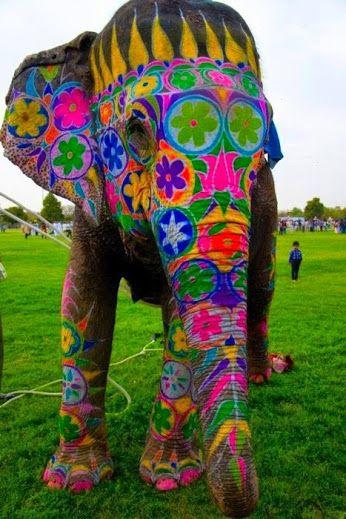 Festival des éléphants : Jaipur (Rajasthan), 5 mars 2015 - Pendant le festival, le Jaipur est animé des éléphants, des danseurs et musiciens. Les éléphants paradent décoré de troncs et défense. Le plus décoré des éléphants est récompensé. L'éléphant polo, l'éléphant race, les remorqueurs de guerre entre l'éléphant et 19 hommes et femmes sont sélectionnés pour le festival.