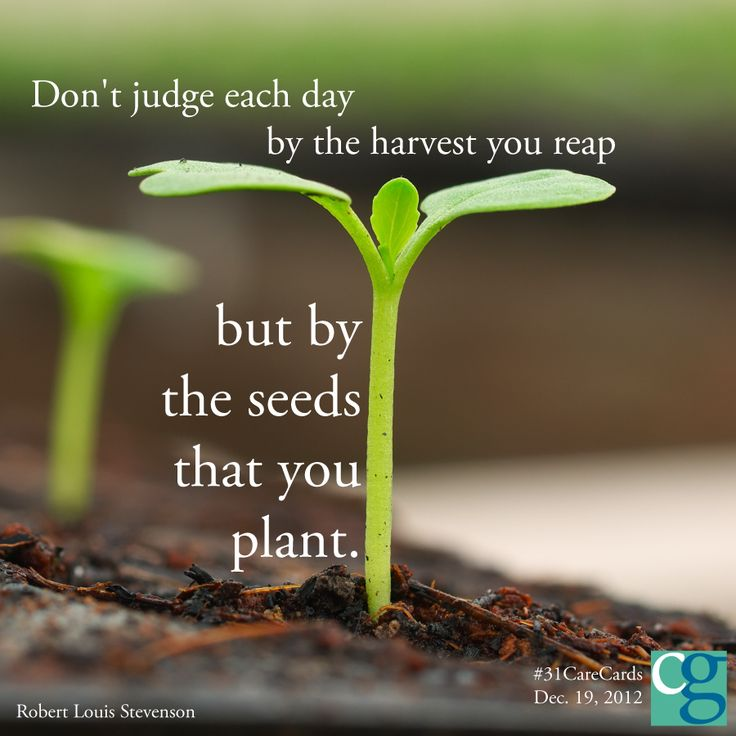Don't Judge Each Day By The Harvest You Reap, But By The