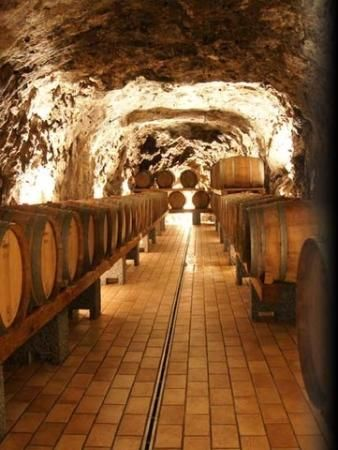 Photos of Green Italy Wine Tours - Private Day Tours, Ostuni - Attraction Images - TripAdvisor