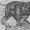 10 Game Animals that Have Gone Extinct in Modern Times: The Atlas Bear