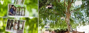 Tema fotografia!! :) : fóruns   O Nosso Casamento