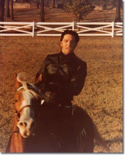 Elvis on his Golden Palomino   horse Rising Sun.