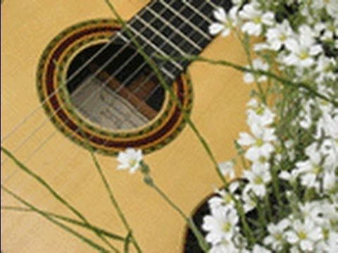 The Music Remembrance Guitar Duo Performing Wedding March In Orlando Florida Is Available For