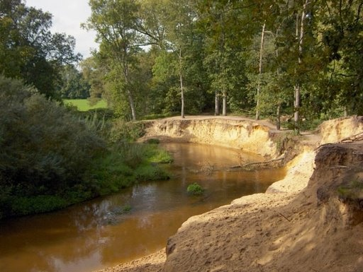 De Dinkel in natuurgebied het Lutterzand. Www.lutterzand.nl