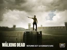 The Walking Dead Posters; S3