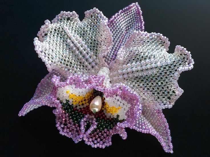 Pretty beaded Orchid!