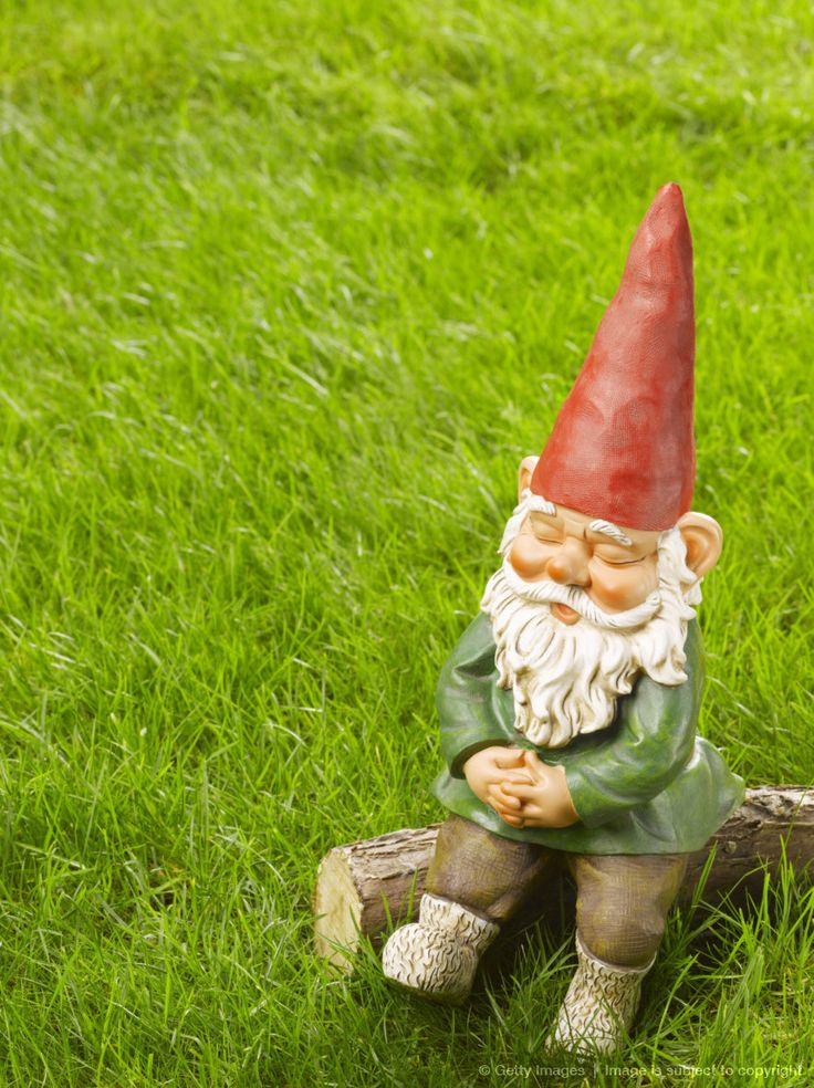 Gnome In Garden: 19 Best Images About Forse Era Uno Gnomo? On Pinterest