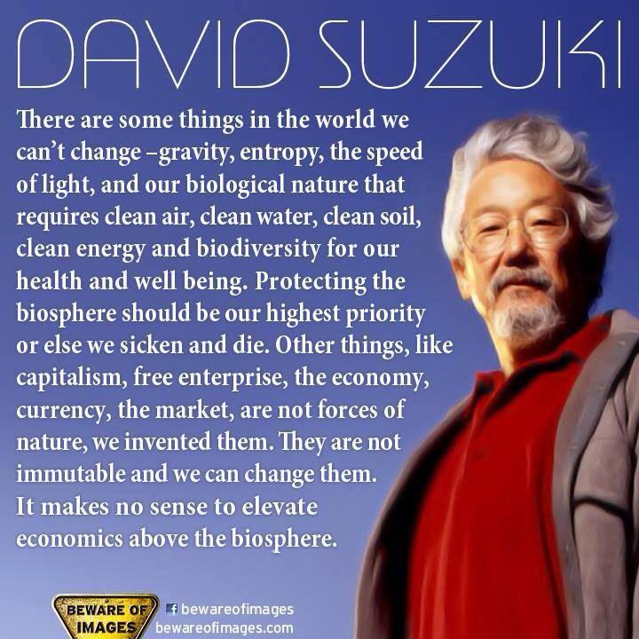 9 best David Suzuki Quotes images on Pinterest   David suzuki ...