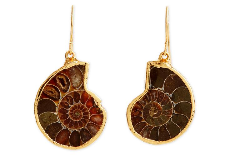 One Kings Lane - From Studs to Chandeliers - Ammonite Fossil Earrings