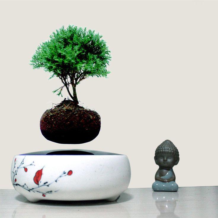 les 35 meilleures images du tableau air bonzai sur pinterest groupe alibaba peintures murales. Black Bedroom Furniture Sets. Home Design Ideas