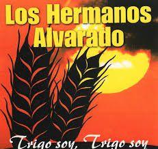 Trigo Soy, Trigo Soy Los Hermanos Alvarado.