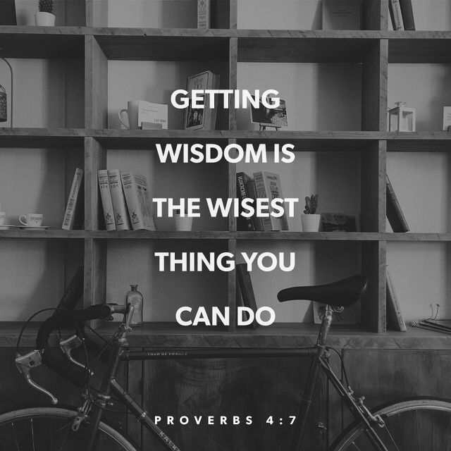"""""""Wisdom is the principal thing; therefore get wisdom: and with all thy getting get understanding."""" Proverbs 4:7 KJV http://bible.com/1/pro.4.7.kjv"""