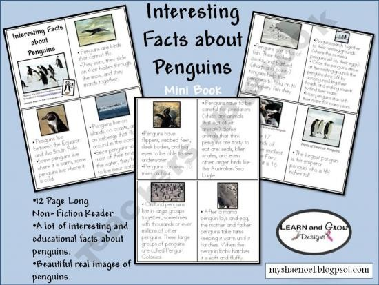 Penguin mini-book, non-fiction, with comprehension questions - free when I pinned them