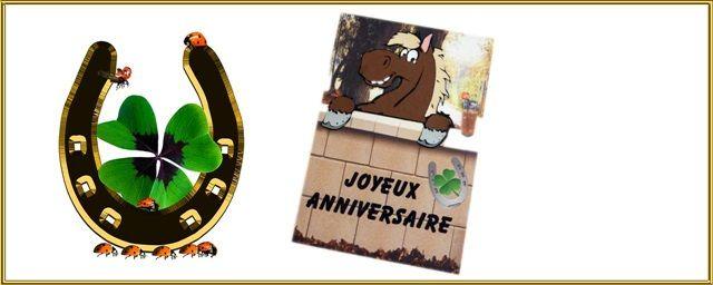 Carte D Anniversaire Cheval Au Bar Cartes De Voeux Diverses
