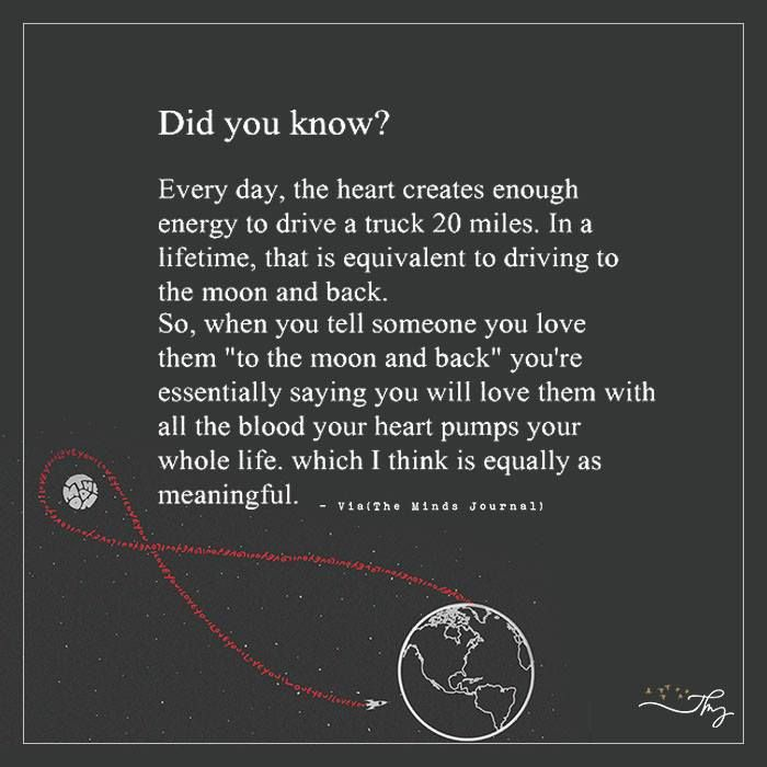 Did you know? - http://themindsjournal.com/did-you-know/
