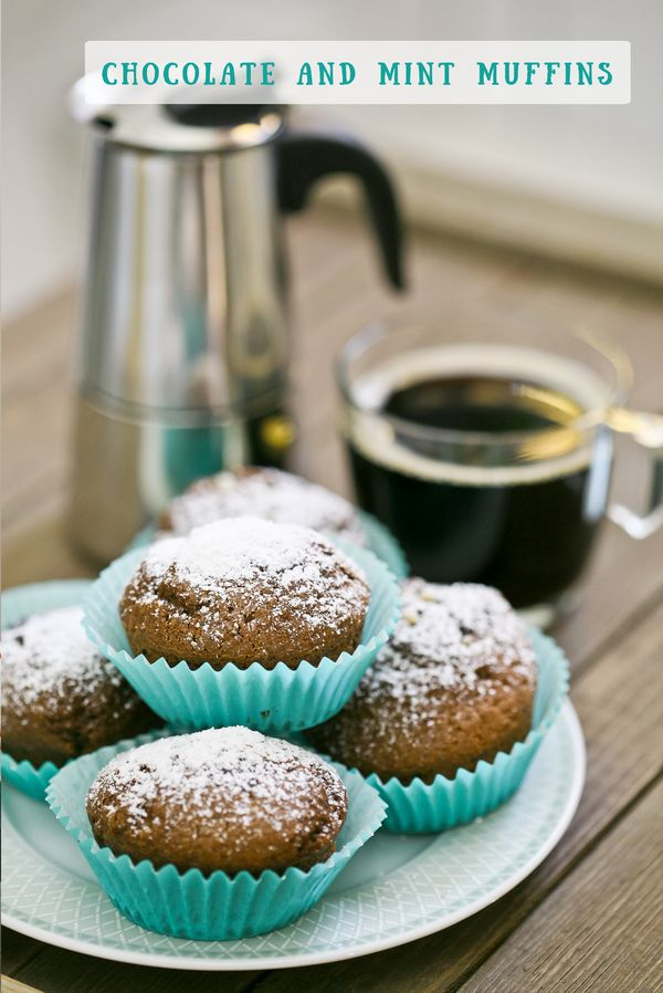 chocolate and peppermint muffins recipe