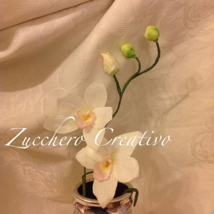 Wafer paper orchid